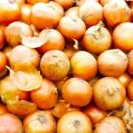 新玉ねぎと玉ねぎの栄養と効能は?選び方は?