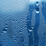 防湿庫の必要性は?メリットや適正温度・選び方などご紹介!